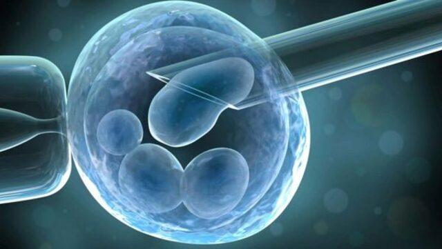 Aşılama Tedavisi ile Hamilelik