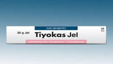 Tiyokas Jel