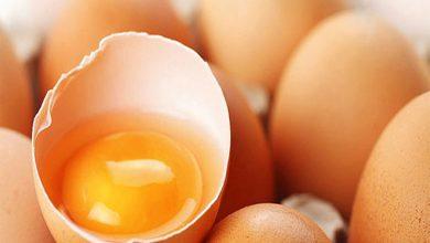 Yumurta Akı ile Yanık Tedavisi