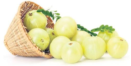 Amla Meyvesi