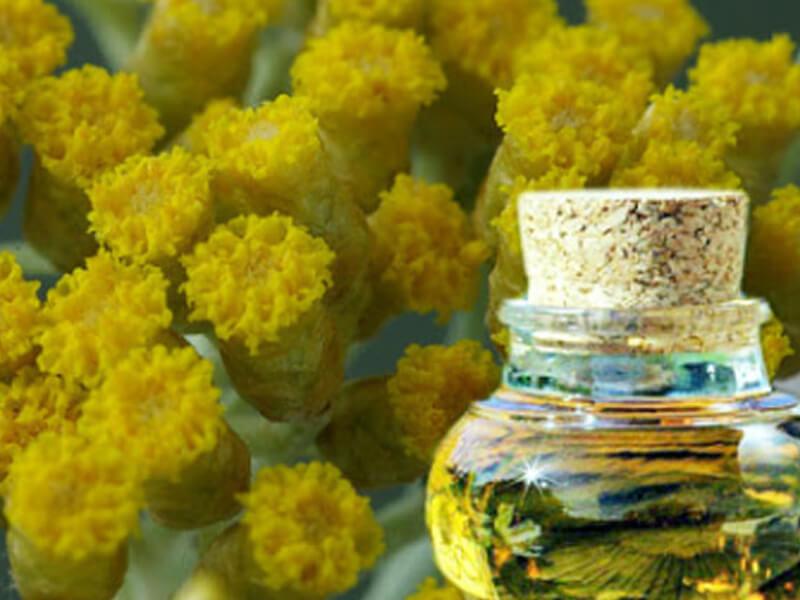 Helichrysum Yağı Faydaları