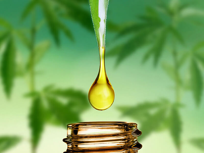 Moringa Yağı Nasıl Kullanılır?