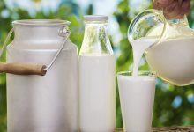 Süt Kilo Yapar mı? Kalorisi Ne Kadar?