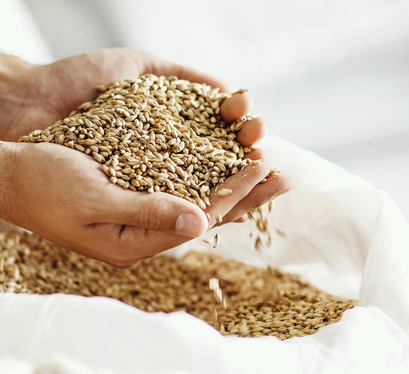 Diyabet Hastaları Rafine Tahıldan Uzak Durmalıdır
