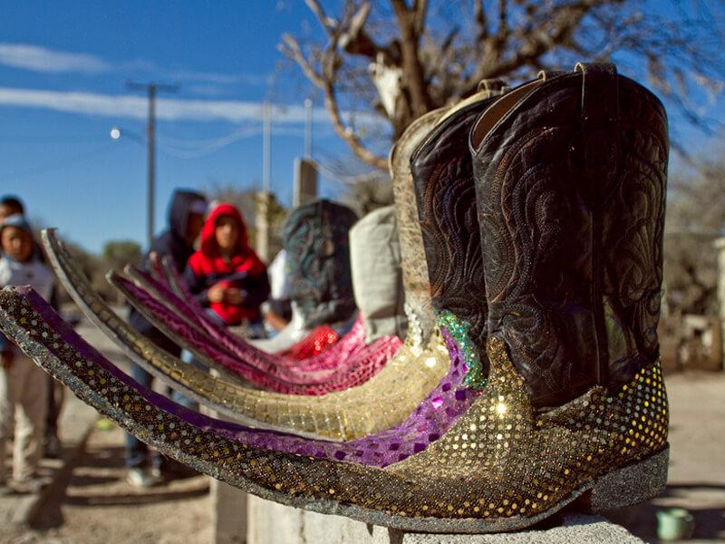 Meksika Trival Botları