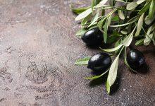 Zeytin Yaprağı Çayı Nasıl Yapılır